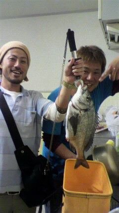 43cmの鯛が釣れました